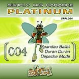 Sunfly Karaoke Platinum Series Volume 4 (CD+G) Karaoke Playbacks