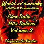 Ciao Italia - Hits Italiens Vol. 2 - Audio Karaoke Playbacks
